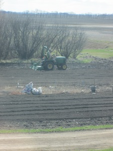 Heather's dad tilling the main garden.
