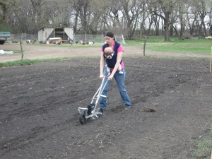 Heather and Eva seeding green beans.