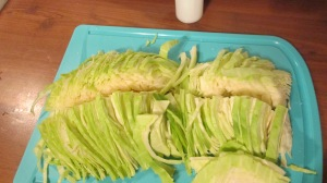 Chopped cabbage | Square Peg Food Farm